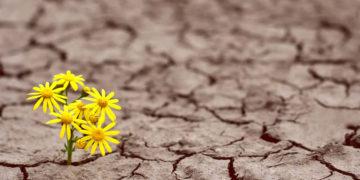 Superare i momenti di crisi, le avversità della vita: eroismo o resilienza?