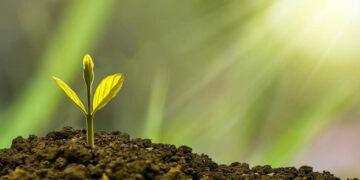 La fatica di crescere